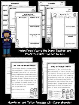 First Grade Sub Plans Winter