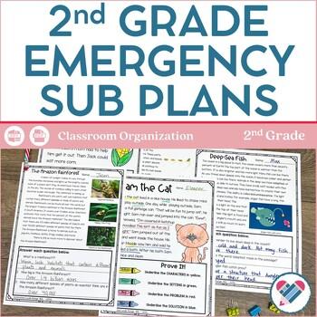 Sub Plans 2nd Grade