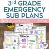Sub Plans 3rd Grade