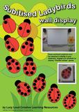Subitising Ladybirds Wall Display