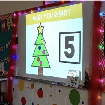 Subitize for Number Sense (December)