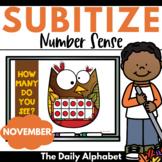 Subitize for Number Sense (November)