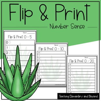 Subitizing Activity Identifying and Printing Numbers 0 - 20