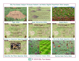 Subject Pronouns Rodents and Moles English PowerPoint Game