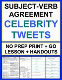 Subject Verb Agreement Celebrity Tweets Grammar No Prep Lesson Plan & Worksheets