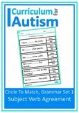 Subject Verb Agreement Grammar Autism Special Education Sp