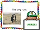 Subject Verb Agreement Interactive PowerPoint FREEBIE!