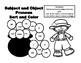 Subject and Object Pronoun Sort and Color