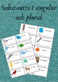 Substantiv i singular och plural