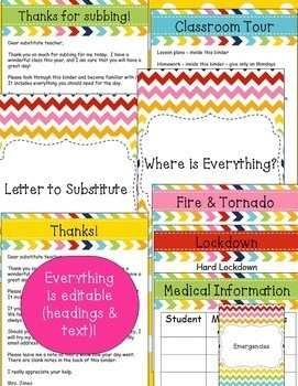 Substitute Binder with Emergency Lesson Plans {editable} - Colorful
