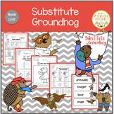 Substitute Groundhog  Book Unit