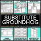 Substitute Groundhog by Pat Miller Book Companion Activities