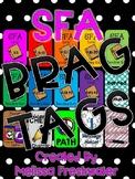 Success for All (SFA) Brag Tags