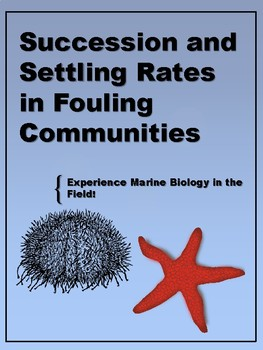 Succession and Settling Rate in Fouling Communities