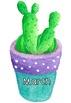Succulent Birthday Chart (Colourful Pots version) #ausbts18
