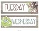 Succulent Calendar Set