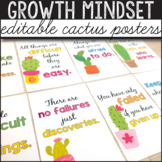 Cactus Classroom Decor, Growth Mindset Posters Editable