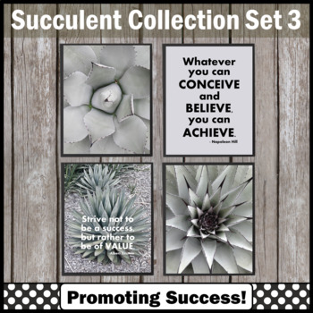 Succulents Classroom Decor Set 3, Inspirational Quote Posters