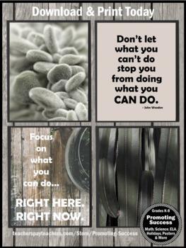 Succulent Classroom Decor Set 4, Motivational Quote Posters