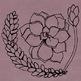 Succulent Line Art Illustrations, Flower Clipart, Cactus