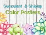 Succulent & Shiplap Color Posters