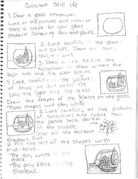 Succulent Still Life Directions and visuals for Junior High