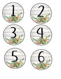 Succulent Student Numbers 1-30