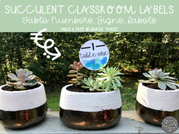 Succulent Table Numbers, Classroom Signs & Labels (76 Signs w/ 4 Editable Signs)