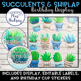 Succulent and Shiplap Birthday Display
