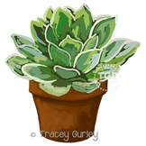 Succulent in Pot, succulent clip art Printable Tracey Gurley Designs