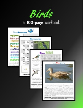 Birds:  100 pages of activities