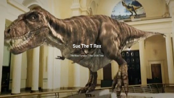 Sue The Famous T Rex From Chicago