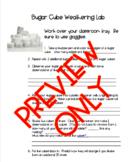 Sugar Cube Weathering Lab Write Up