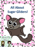 Sugar Glider Adapted Book