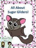 Sugar Glider Adapted Book