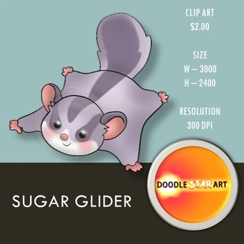 Sugar Glider Clip Art