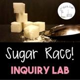 Sugar Race Inquiry Lab