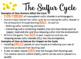 Sulfur Cycle Board Game