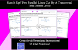 Sum It Up! Differentiated Two Parallel Lines Cut By A Transversal Activity
