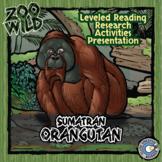 Orangutan - 15 Zoo Wild Resources - Leveled Reading, Slides & Activities