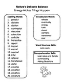 Summary Spelling and Skills Page for Energy Makes Things H