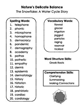 Summary Spelling and Skills Page for The Snowflake, 4th Grade Imagine It
