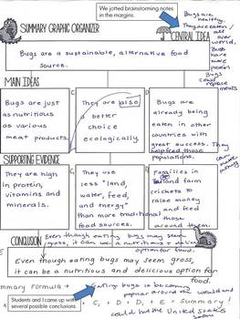 Summary Writing Mini-Unit