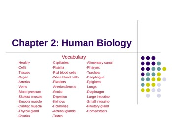 Summary of Total Health Chapter 2 Powerpoint Presentation