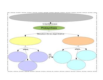 Summary of Photosynthesis & Cellular Respiration