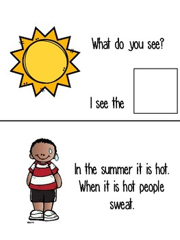 Summer Adapted Book & Comprehension Quizzes