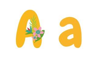 Summer Alphabet & Vocabulary