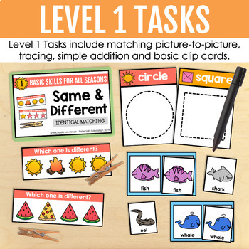 Summer Basic Skills Task Boxes (pre-k & special education)