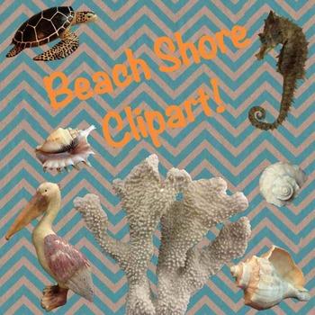 Summer Beach Shore Clipart