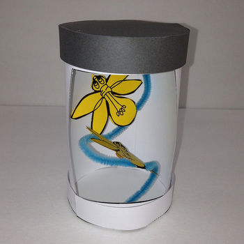 Summer Bug Jar Project